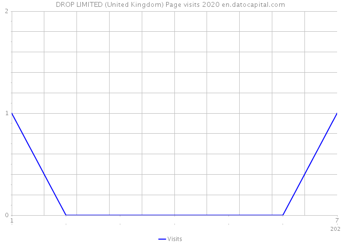 DROP LIMITED (United Kingdom) Page visits 2020