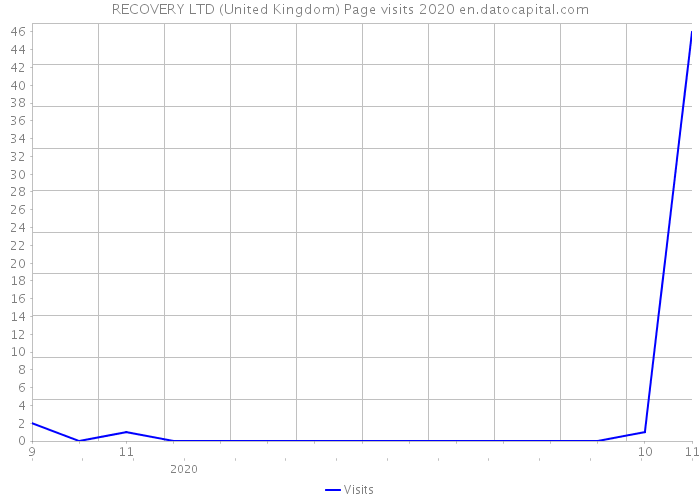 RECOVERY LTD (United Kingdom) Page visits 2020